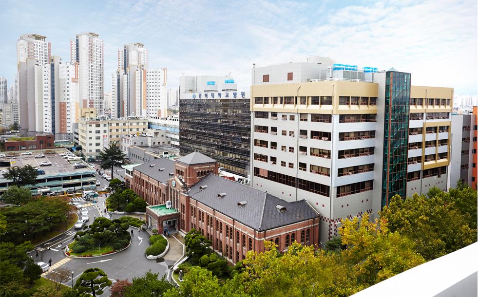 대구 시내에 위치한 경북대학교병원 사진