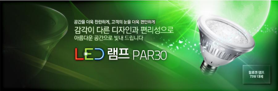 LED 램프 PAR30