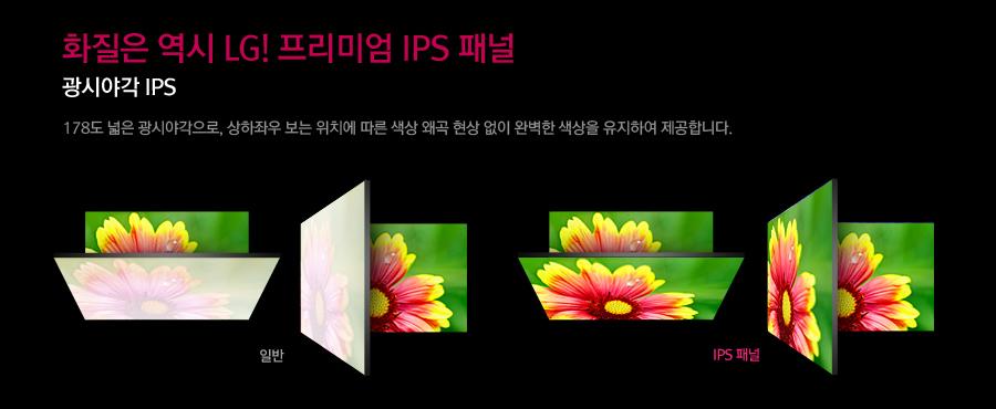ȭ���� ���� LG! �����̾� IPS �г�