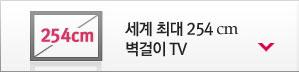 �����ִ� 254cm ������ TV