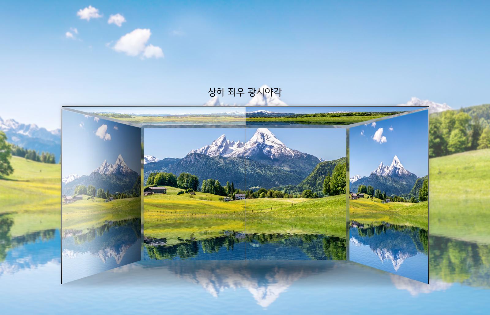 자연색 표현을 위한 최상의 조합 IPS패널 이미지