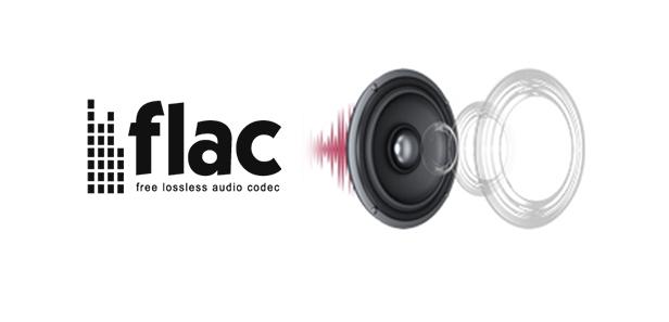 free lossless audio codec 이미지